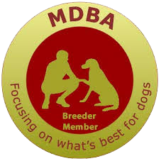 Master Dog Breeders Association badge